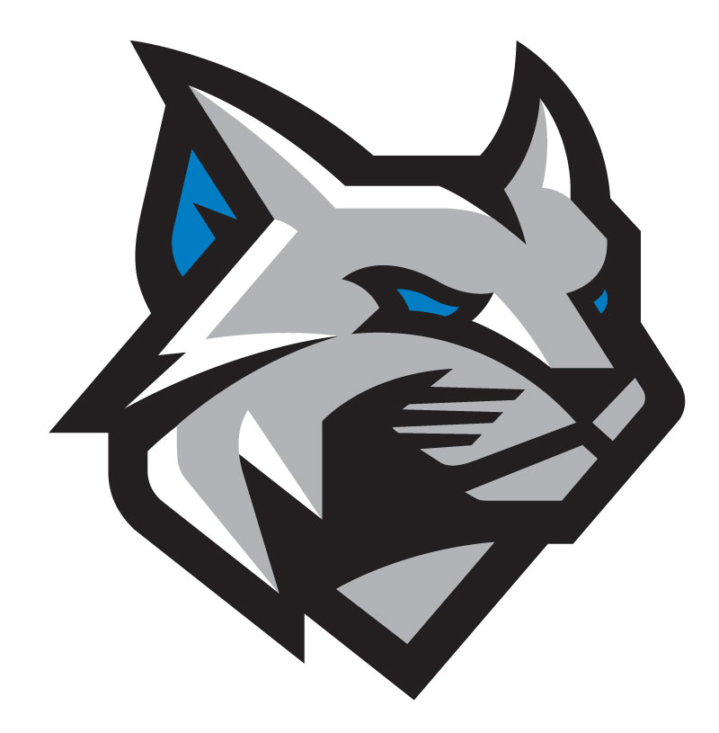 The Wildcat's Changing Face